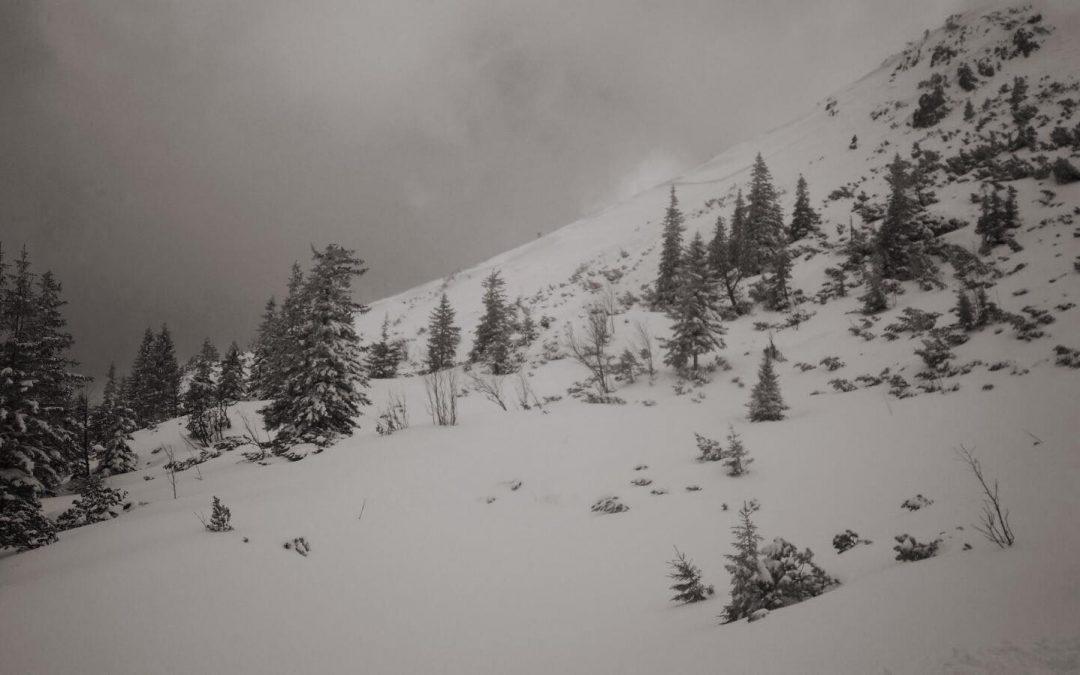 Spontaner Abgang eines Schneebrettes am Schauerstein vergangenen Sonntag