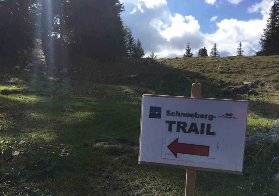 Assistenzeinsatz beim Schneeberg Trail